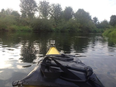 Kayaking Sammamish River